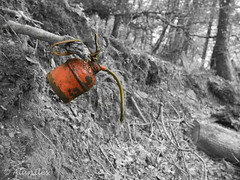Oil can left in the woods (Alan Iles) Tags: red white black colour woods rust cornwall track allen with mask 5 north can valley oil middle left lightroom trelill
