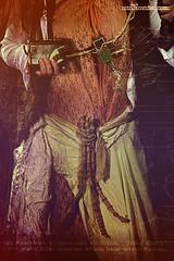 Mistletoe noise 1 (-- MIZUKO --) Tags: woman nature girl dark magic sound electro celtic druid magical