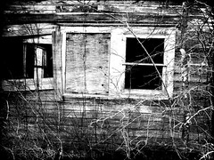 Life Is Good (Groovyal) Tags: life old art window photography death see eyes image good neglected bad abandon lifeisgood groovyal