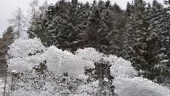 Frostwork (Been Around) Tags: schnee snow austria sterreich europa europe hiver travellers eu samsung obersterreich europeanunion autriche aut o  2015 steyrling neuschnee frostwork a onlyyourbestshots nothingbutthebest note3 thisphotorocks expressyourselfaward galaxynote3 20150125151940