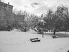 Parque (pinhead1769) Tags: winter snow blancoynegro blackwhite nieve invierno alava euskadi vitoriagasteiz bwdreams