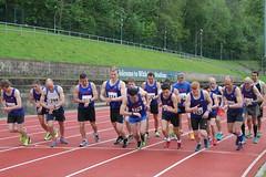 Arena 80 3k track