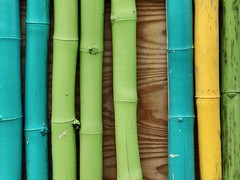 The Spectrum of Happiness (GregKoren) Tags: hot colors spectrum happiness sunny bamboo stcroix virginislands fortfrederick