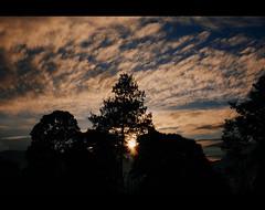 sunsunsun (r_if) Tags: sun sunshine silhouette lumix warm siluet gm1 lumix20mm17