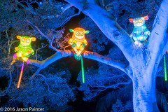 Pygmy Tarsiers (Japester68) Tags: city light sculpture animal festival night asian zoo outdoor walk sydney vivid australia event nsw lantern aus primate tarsier 4star