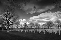 4 May Memorial Day / 4Mei Herdenkingsdag (jo.misere) Tags: bw cemetery cross zw kerkhof 4mei dodenherdenking margraten kruisjes