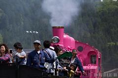 Pink SL at Wakasa Railway (27) (double-h) Tags: sl tottori jnr steamlocomotive c12   eos6d   pinksl wakasarailway  c12 ef100400mmf4556lisiiusm c12167 wakasastation classc12 c12 sl