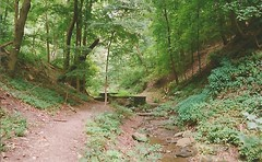 Lower Panther Hollow Trail, Schenley Park. (trainphotoz) Tags: pittsburgh schenleypark pantherhowllow pantherhollowwoods lowerpantherhollowtrail