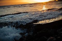 IMG_6867 (Nlekt Photography) Tags: ocean california cali canon waves pacific pacificocean socal 7d southerncalifornia westcoast southerncali eos7d canon7d crystalcovenationalpark crytsalcove