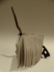 DSCN4474 (ArcticCoyote) Tags: art paper bookbinding bookmaking handmadebooks