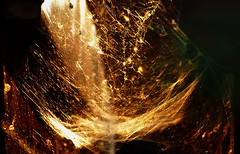Golden web. (Les Fisher) Tags: sunset gold cobwebs goldenlight