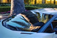 400K reflections (PeterThoeny) Tags: reflection windshield glass palmtree tree lamborghini gallardo lamborghinigallardo siliconvalley sanfranciscobayarea nex6 sel50f18 2xp raw hdr photomatix hotel rosewoodsandhill sandhill menlopark california outdoor outside fav100 sanfranciscobay