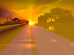 Driving in the Sunset (soniaadammurray - SLOWLY TRYING TO CATCH UP) Tags: road trees sunset orange sun abstract manipulated reflections lights driving digitalphotography quartasunset