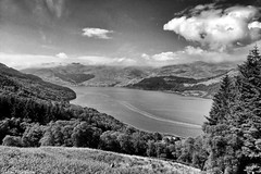 Loch Goil (AdamMatheson) Tags: mountain mountains monochrome forest landscape mono scotland nationalpark scenery forestry mountainbike scottish scene loch mountainbiking lochs lochgoilhead ardgarten arrocharalps lochlomondnationalpark scottishlandscape argyllbute forestrycommission scottishscenery dukespass scottishmountain ardgartenpeninsula corranlochan adammatheson alpsarrochar helensburghphotographer helensburghphotography adammathesonphotography