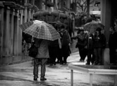 Fotografiando bajo la lluvia (Markus' Sperling) Tags: barcelona rain photography photographer rainy shooting fotografia festa centelles paraguas tonis fotografo dels osona lloviendo llover