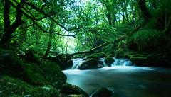 golitha falls (Kevin Heggie) Tags: uk longexposure nature water cornwall waterfalls slowshutter nationaltrust sigma1020mm liskeard golithafalls sonydslra65