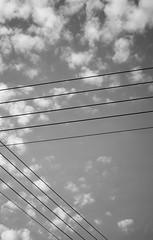 Music* (AlexGinger) Tags: minimal minimalism pentagram music bw black white gray