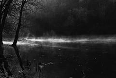 0342 Mystic Light (Hrvoje Simich - gaZZda) Tags: wood light mist lake reflection water misty forest nikon croatia mystic nikond200 borovik sigma17702845 gazzda hrvojesimich