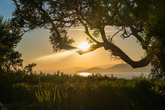 (Lova Photo - Vanessa Longo Renard) Tags: blue trees sunset sea sky sun mer grass yellow clouds jaune de soleil mood coucher ciel arbres nuages ambiance herbes paisible