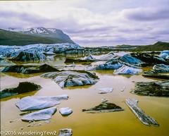 Svínafellsjökull glacial lagoon (film) (wanderingYew2 (thanks for 3M+ views!)) Tags: 120 mamiya film mediumformat iceland nationalpark glacier iceberg 6x7 filmscan vatnajökull mamiya7ii glaciallagoon vatnajökullglacier svínafellsjökull svínafellsjökullglacier vatnajökulsþjóðgarður vatnajökullnationalpark