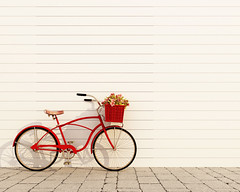 222335314 (tigercop2k3) Tags: 3d abstract antique art bicycle bike black blank city classic cycling day design empty fashion female fixed flooring frame gear graphic grunge happy hipster image isolated italy lady modern nature old paper pattern photo picture portfolio poster present retro roses style summer sunny template text texture urban vintage wall wheel wood