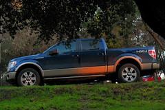 Ford F-150 Lariat 2013 (RL GNZLZ) Tags: ford 4x4 f150 lariat 50 v8 supercrew 2013