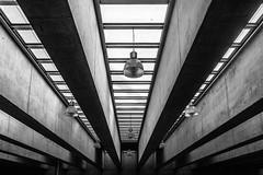 Lines (Pablo.Barros) Tags: roof santiago blackandwhite blancoynegro lines arquitetura architecture pretoebranco teto linhasguias centrodeculturalamoneda