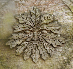 The 'Green Man's' leafy face carved in wood at Newstead Abbey in England (albatz) Tags: greenman leafy face carved wood newstead abbey england