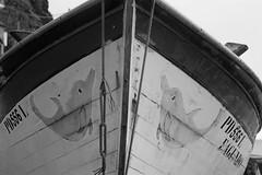 Barca amb dofins (miquelopezgarcia) Tags: travel light sea summer blackandwhite bw fish blancoynegro portugal port canon landscape puerto island eos mar fisherman cabo europe barcos favme atlantic traveller cap pescado sanmiguel pesca aire thebest holydays azores illa antropology saomiguel blancinegre pescadores cabe followme 2014 oficio travelphotography embarcaciones parcnatural horitzo youngphotographer vaixells pontadoarnel nicecapture canon450d teenagephotographers azoresislands tamronlenses demataro miquellopez under2018