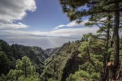 Mirador Barranco de Garome (memories-in-motion) Tags: blue green nature clouds zeiss forest landscape photography meer kanaren natur wolken aussicht lapalma landschaft 15mm atlantik distagon viewloceam