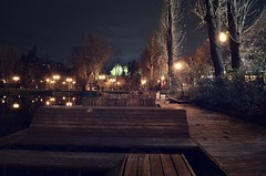 (iliyw) Tags: park wood lake tree night lights pond