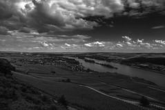 Rheinblick (Marcel Husler) Tags: mountain river wine rhein rdesheim wein niederwalddenkmal