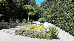 isole borromee (15) (giangian239) Tags: lago acqua blu giardino maggiore albero verde prato statua monumento isola isole borromee madre bella superiore panorama paesaggio lungolago