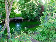 DSC03829 (Mr.J.Martin) Tags: tusslingbavaria bayren germany gapp garden canal village church wildflowers