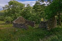 Earybedn threshing barn (doncontrols) Tags: earybedn eary hidden valley isleofman ellanvannin ruin barn farm croft horsemill horsegin wall stone derelict abandoned