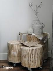 Romee (ieikwxha8) Tags: boomstam meubels bijzettafel stoer houten maatwerk stoereplanken