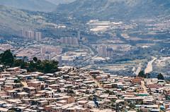 Liberacin  Los Sauces (Eliminar el Dengue Colombia) Tags: colombia mosquito virus barrio comunidad sauces dengue medelln antioquia salud bello prevencin aedes udea liberaciones aegypti pecet desafocolombia