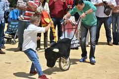 Osuna, Spain (LidyvN) Tags: park game training spain fiesta child bull spanish learning andalusia bullfight toro toreador fria picador matador fandi entrener