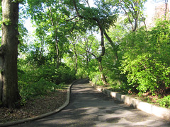 Morningside Park, 7:45 a.m., 10 May 2013 (jschumacher) Tags: nyc morningsidepark
