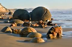 Koekohe Beach-Moeraki Boulders (scrumpy 10) Tags: newzealand nature stone landscape nikon natur boulders aotearoa mothernature rollingstone spherical neuseeland landschaften d800 jacqualine ozeanien newzealandnature sphericalrocks scrumpy10 sphericalboulders