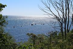 Glittering sea (Hkan Dahlstrm) Tags: sea se skne sweden east sverige f80 uncropped stersjn glittering 2013 skneln canoneos100d sek ef40mmf28stm 1321072013155306