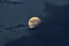 The Moon Behind a Veil of Clouds (x-ray tech) Tags: sky cloud moon night clouds canon evening veil luna full lunar