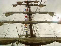 (aurinko4) Tags: finland mexico helsinki sails mast barque hietalahti tallshipsrace cuauhtemoc p1020494