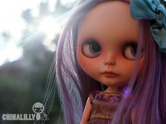 Chinalilly x Trio Collaboration: Aurora Australis