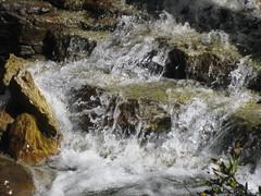 Leg 6 - Hinton to Canmore (Forest Edge) Tags: summer water waterfall holidays alberta jaspernationalpark banffnationalpark mountainspring mountainwater summertravel 2013 summer2013