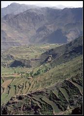 On the Road to Taiz (ioensis) Tags: road mountain north terraces 1984 yemen taiz jdl ioensis 2111b
