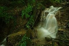Nouvelle cascade découverte sur un affluent rive gauche du Creux lague - Blégny (francky25) Tags: les du un jura sur cascade nouvelle franchecomté gauche découverte bains rive affluent salins creux lague blégny