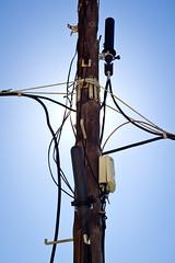Upgraded tree (Pirata Larios) Tags: lighting canon contraluz poste flash pole cables wires stick dslr palo connection backlighting iluminacion conexion cableado mastil strobist 60d carloslarios