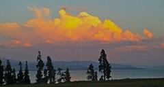 Pastel Sky (Omi<3) Tags: trees sunset sky pretty pastel yellowstone shados
