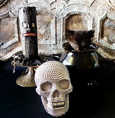 My Halloween decor this year (DollyBeMine) Tags: decorations rescue baby black cute halloween cat skull kitten candle display witch foster decorating decor cauldron rescued 2013
